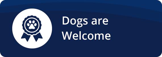ycs-dogs